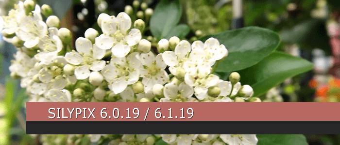 SILKYPIX 6.0.19 / SILKYPIX 6.1.19