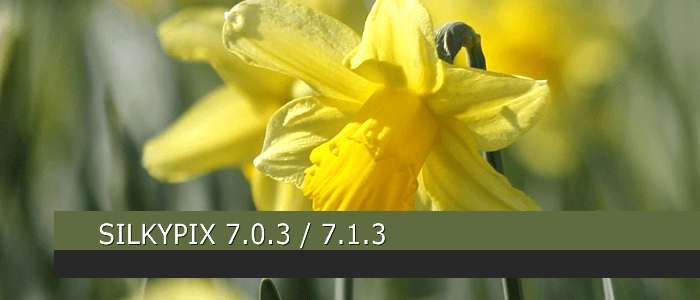 SILKYPIX DS Pro7 Updated