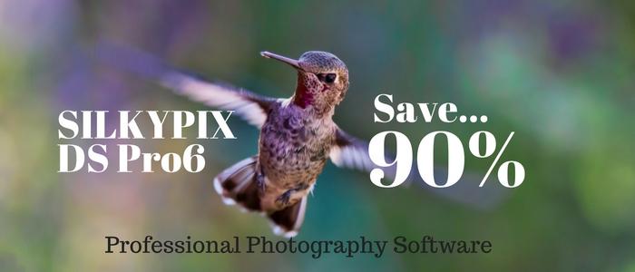 Save 90% on SILKYPIX DS Pro6