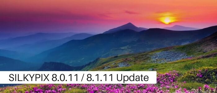 Developer Studio Pro8 Ver.8.0.11.0