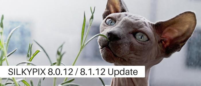 Developer Studio Pro8 Ver.8.0.12.0