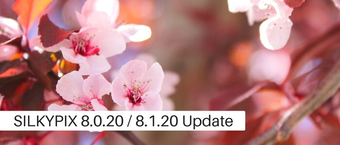 SILKYPIX DS Pro8 8.0.20
