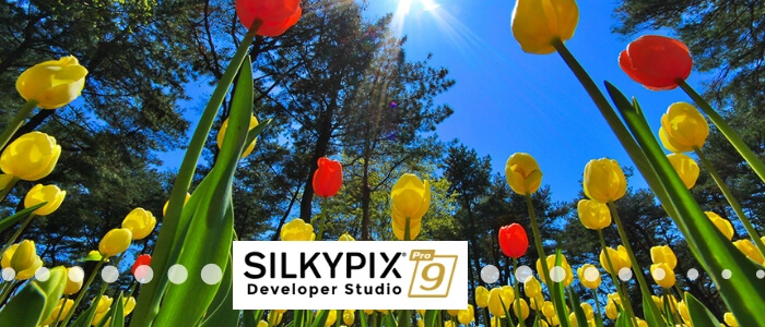 SILKYPIX DS Pro9 Released